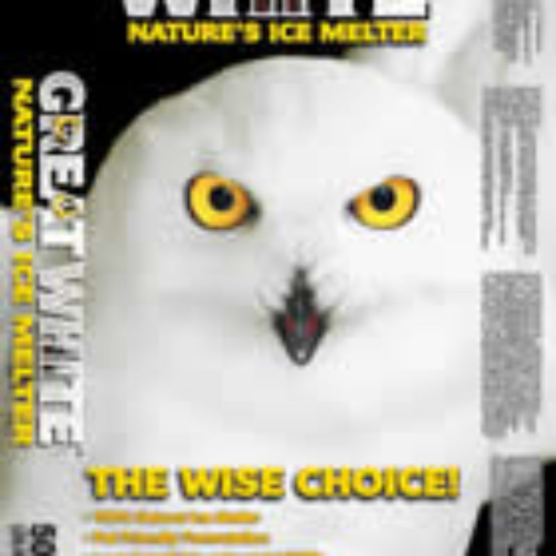 WSJ-The Safest Ice Melt Products for Your Pet in the Snow