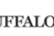 Logo for the Buffalo News
